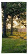 Trees At Sunrise Beach Towel