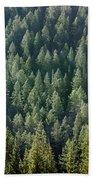 1a9502-trees Lit Up, Wy Beach Towel