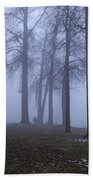 Trees Greenlake With Man Walking Beach Towel