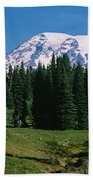 Trees In A Forest, Mt Rainier National Beach Towel