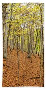 Trees In A Forest, Stephen A. Forbes Beach Towel