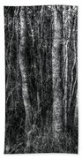 Trees In Black And White Beach Towel