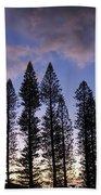 Trees In Silhouette Beach Sheet