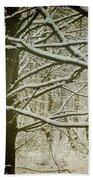 Trees In Snow Beach Towel