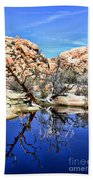 Trees In The Barker Dam Beach Towel