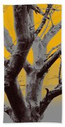 Winter Trees In Yellow Gray Mist 1 Beach Towel