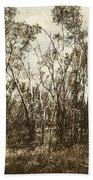 Trees Of Ashburn Beach Towel