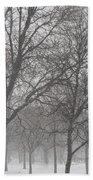 Trees Of Silence Beach Towel