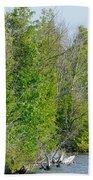 Trees On A Lakeshore Beach Towel