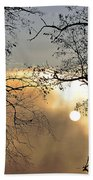Trees On Misty Morning Beach Towel