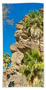 Trees On South Side Of Andreas Canyon In Indian Canyons-ca Beach Towel