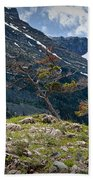 Trees On Top Of A Ridge At Glacier National Park Beach Towel