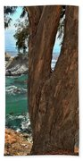 Trees Over Mcway Falls Beach Towel