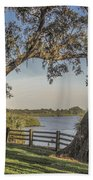 Trees With A View Beach Towel