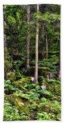 Triberg Forest Beach Towel