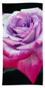 Tricolor Rose Beach Towel