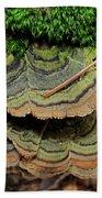 Tricolor Turkeytail Beach Towel