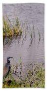 Tricolored Heron Beach Towel