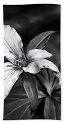 Trillium - Black And White Beach Sheet