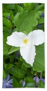 Trillium - White Beauty Beach Towel