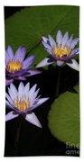 Trio Of Purple Water Lilies Beach Towel