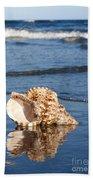 Triton Seashell Beach Towel
