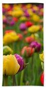 Triumphant Tulips Beach Towel