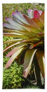Tropical Bromeliad Beach Towel
