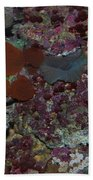 Tropical Coral Beach Towel