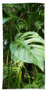 Tropical Green Foliage Beach Towel
