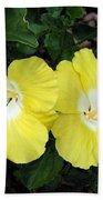 Tropical Hibiscus - Bonaire Wind 01 Beach Towel