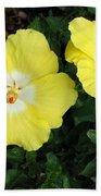 Tropical Hibiscus - Bonaire Wind 02 Beach Towel