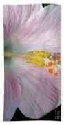 Tropical Hibiscus Beach Towel