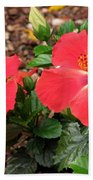Tropical Hibiscus - Starry Wind 01 Beach Towel