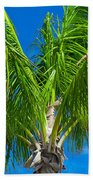 Tropical Palm Portrait Beach Towel
