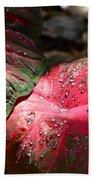 Tropical Rain - Botanical Art By Sharon Cummings Beach Towel