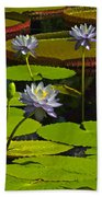 Tropical Water Lily Flowers And Pads Beach Towel