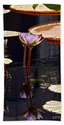 Tropical Waters Floral Charm -- Version 2 Beach Towel