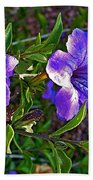 Trumpet Vine In Apache Junction-arizona   Beach Towel
