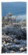 Tucson Covered In Snow Beach Towel