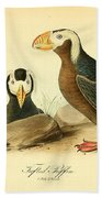 Tufted Puffins Beach Towel by Philip Ralley