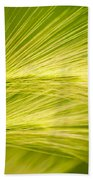 Tufts Of Ornamental Grass Beach Towel