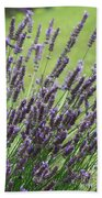 Tuilieres Lavender Beach Towel
