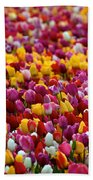 Tulip Bud Farm Portrait Beach Towel