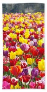 Tulip Flower Festival Art Prints Spring Beach Towel