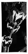 Tulip Group In Black And White Beach Towel