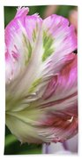 Tulip Time Pink And White Beach Towel