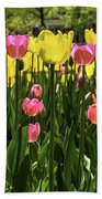 Tulip Time Pink Yellow Black Beauty Beach Towel