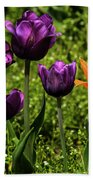 Tulip Time Purple And Orange Beach Towel