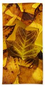 Tulip Tree Leaves In Autumn Beach Towel